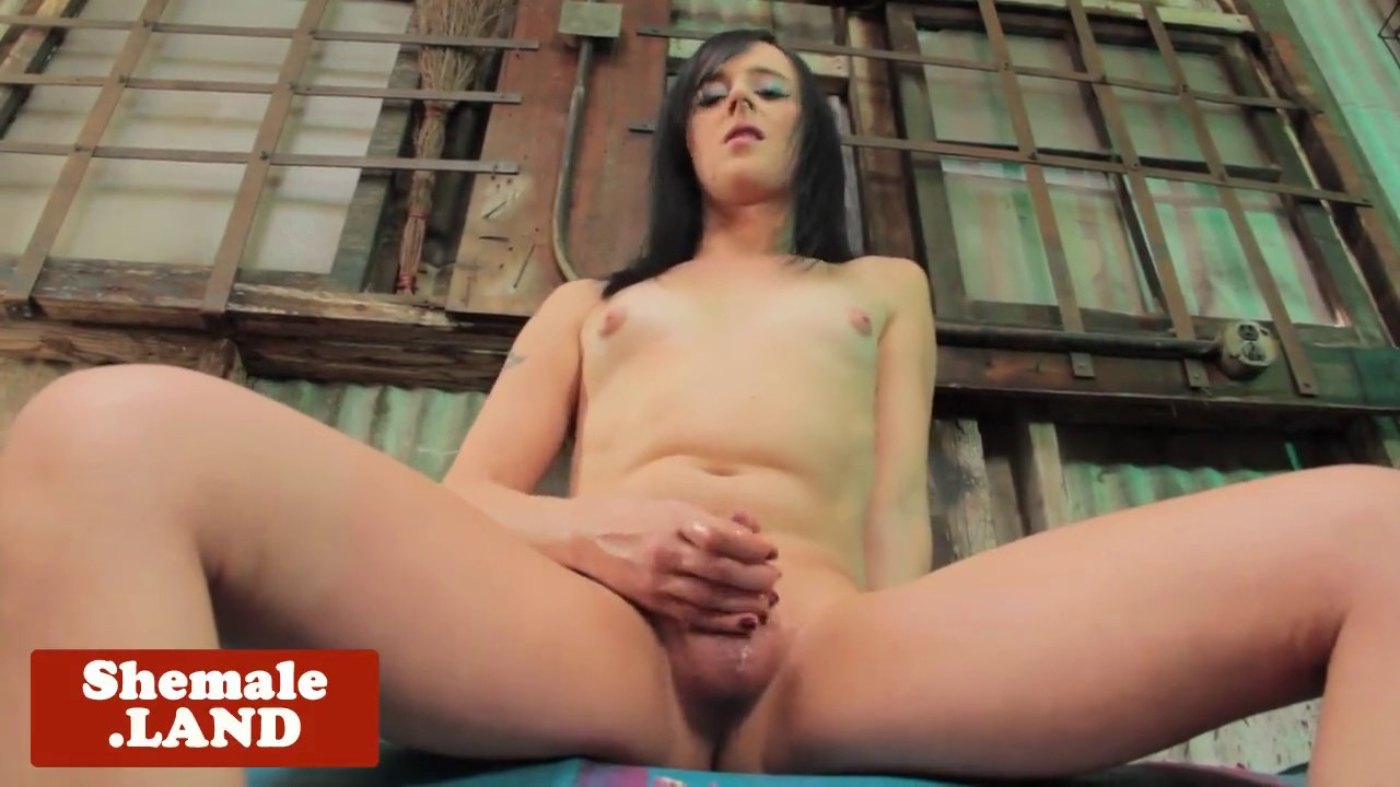 Trans cocksucker babe drilled doggystyle